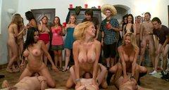 novie-seks-konkursi