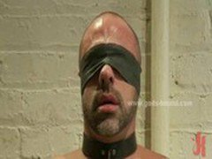 Tied in chains and with eyes covered strong hunk sucks cocks and gets spanked